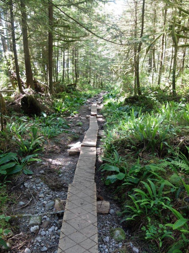 west coast trail 531.JPG
