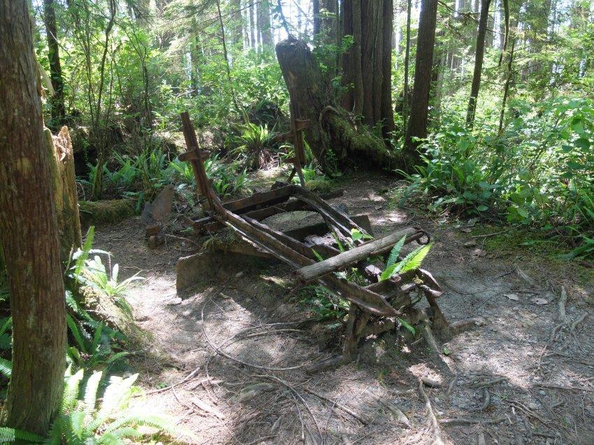 west coast trail 532.JPG