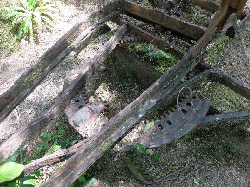 west coast trail 537.JPG