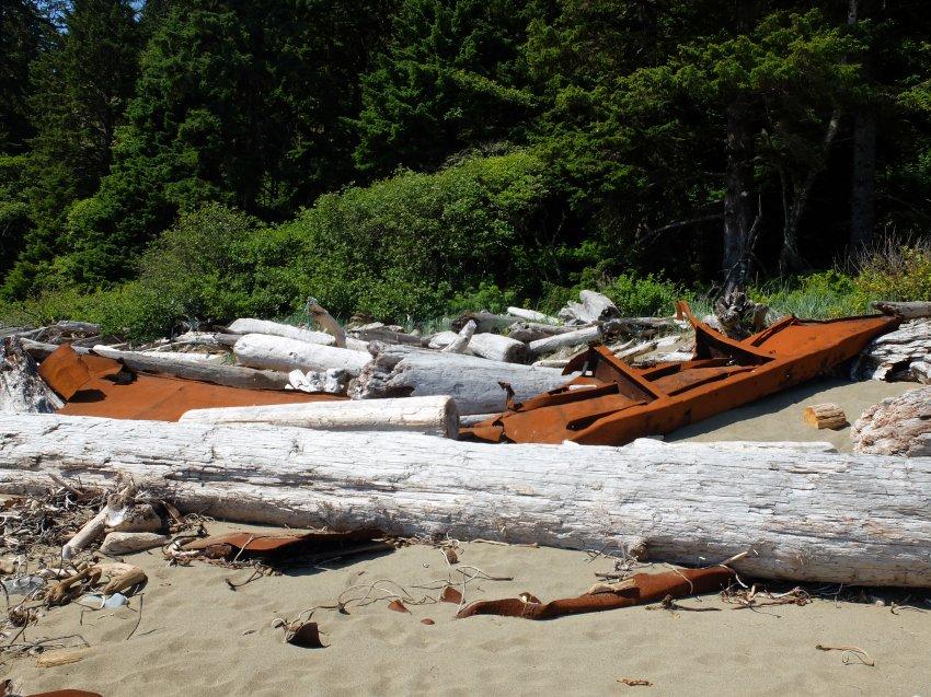 west coast trail 769.JPG