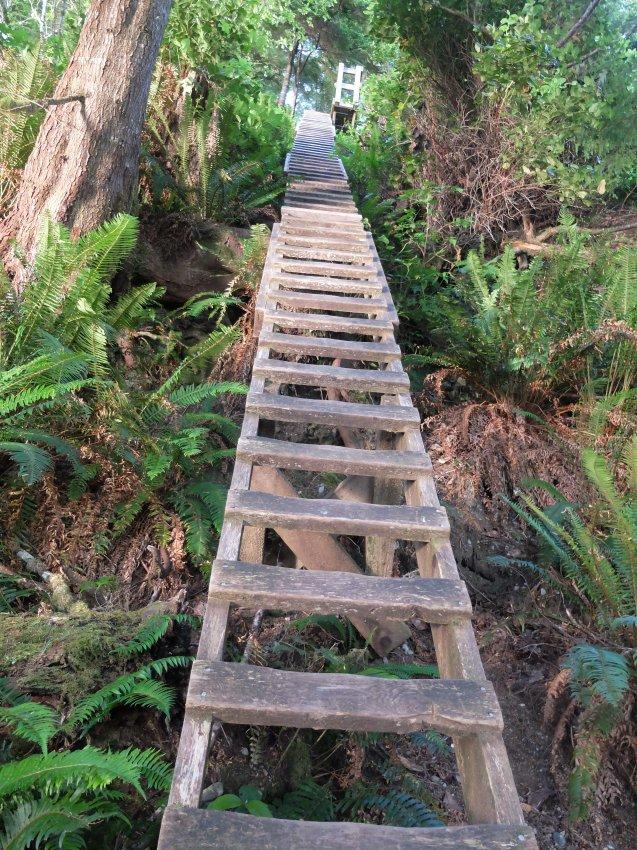 west coast trail 825.JPG