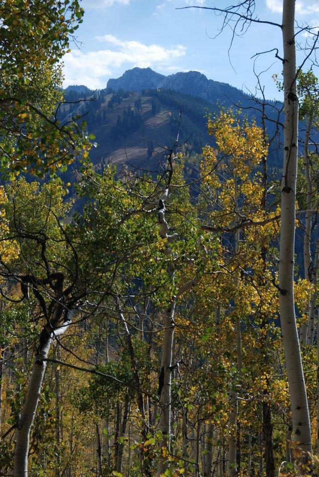 Willow Lake Oct 2010_100210_0338.JPG