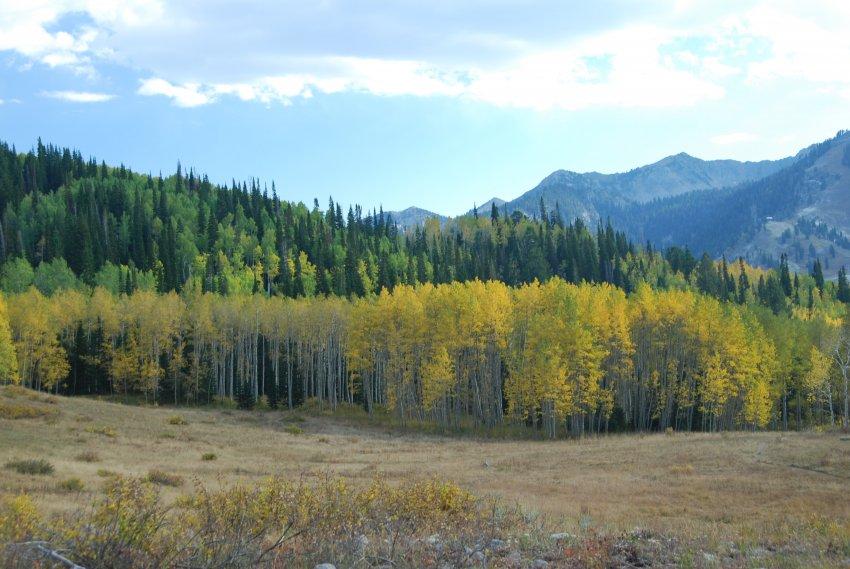 Willow Lake Oct 2010_100210_0349.JPG