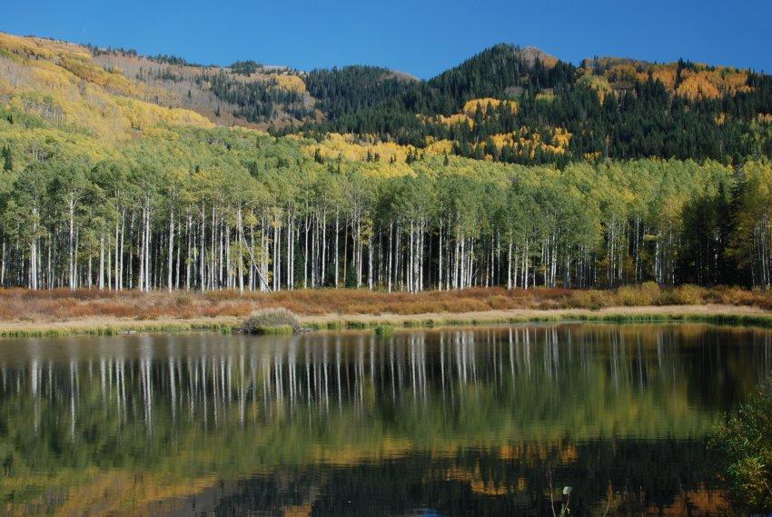 Willow Lake Oct 2010_100210_0362.JPG