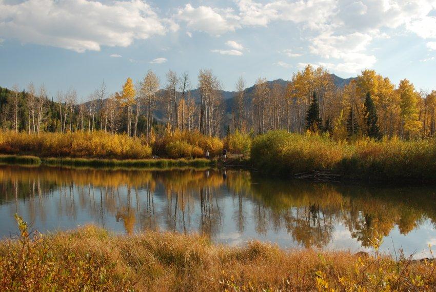 Willow Lake Oct 2010_100210_0377.JPG