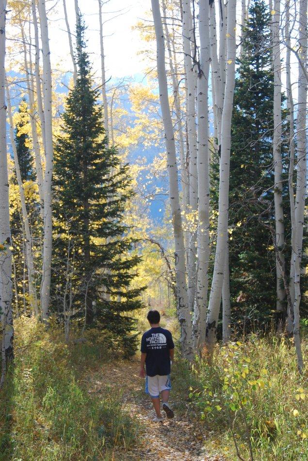 Willow Lake Oct 2010_100210_0381.JPG