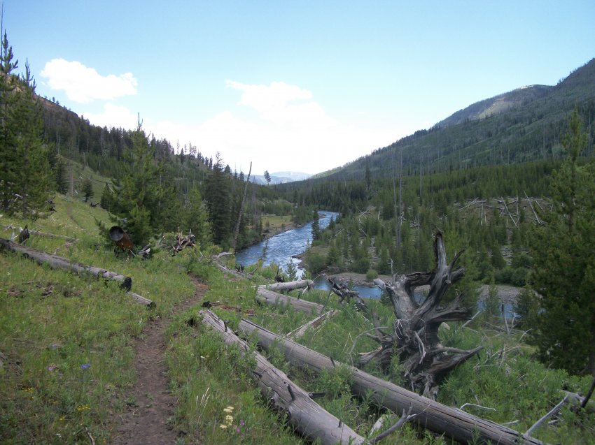 Yellowstone July 2012 339.JPG
