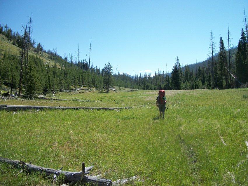 Yellowstone July 2012 359.JPG