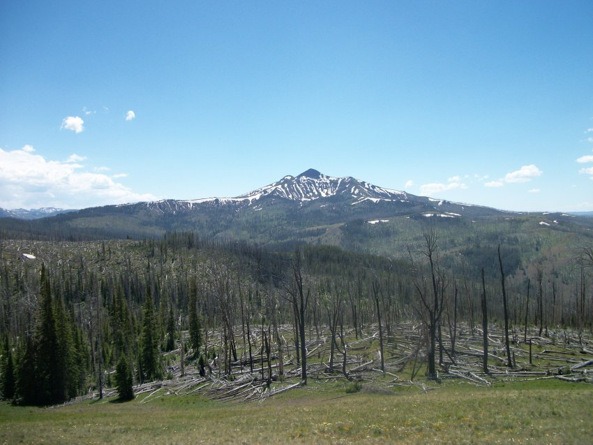 Yellowstone July 2012 364.JPG