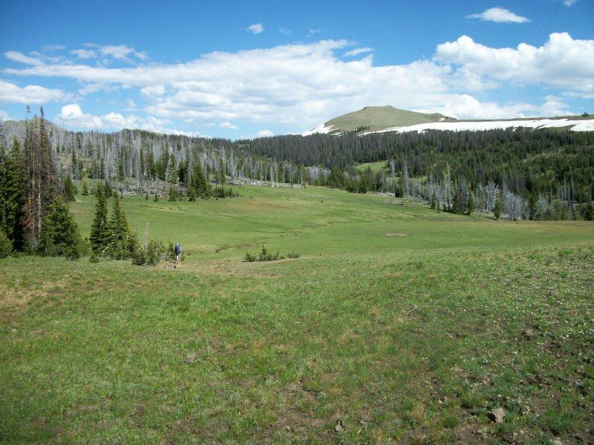Yellowstone July 2012 376.JPG