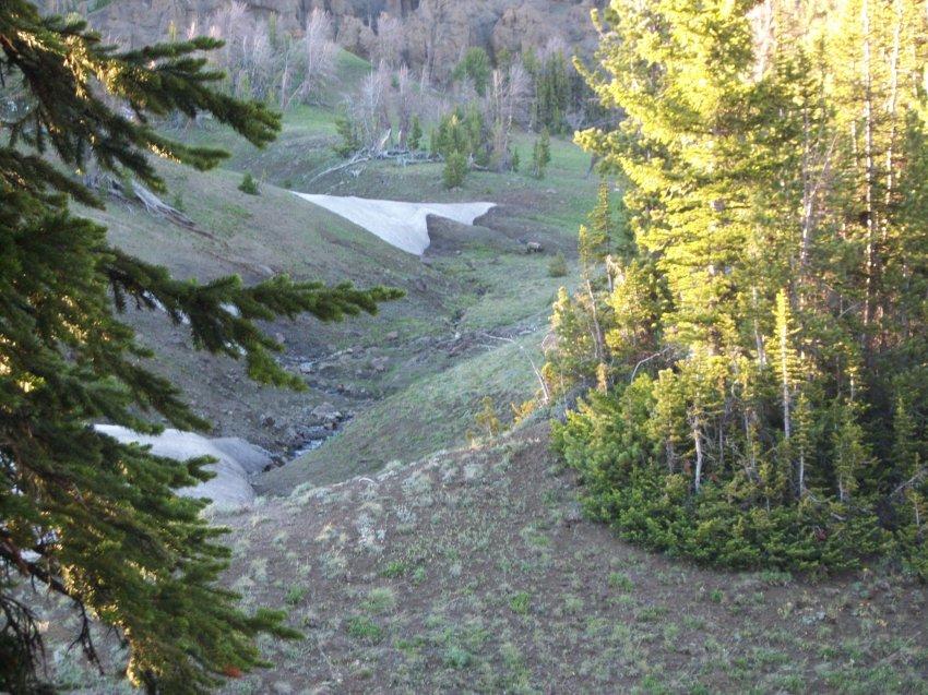 Yellowstone July 2012 416.JPG