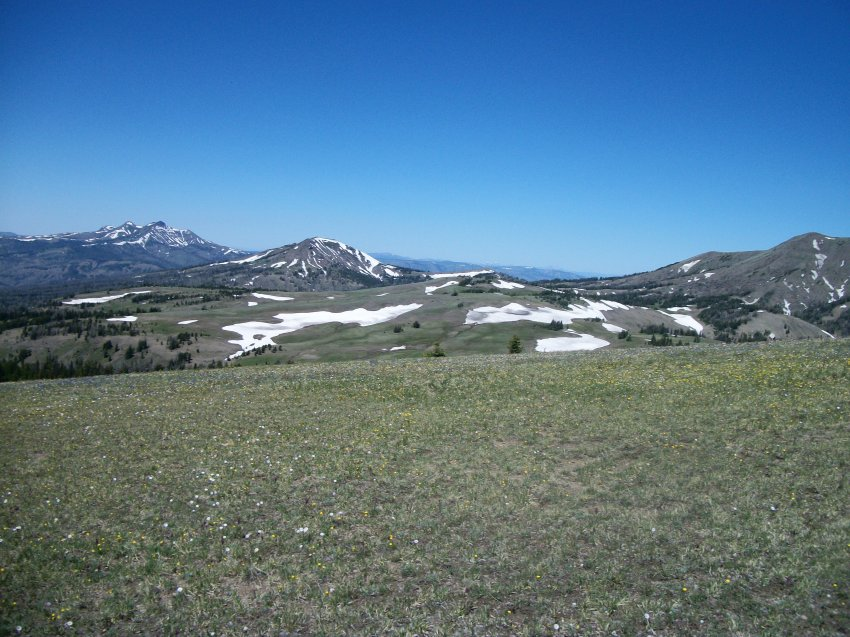 Yellowstone July 2012 443.JPG