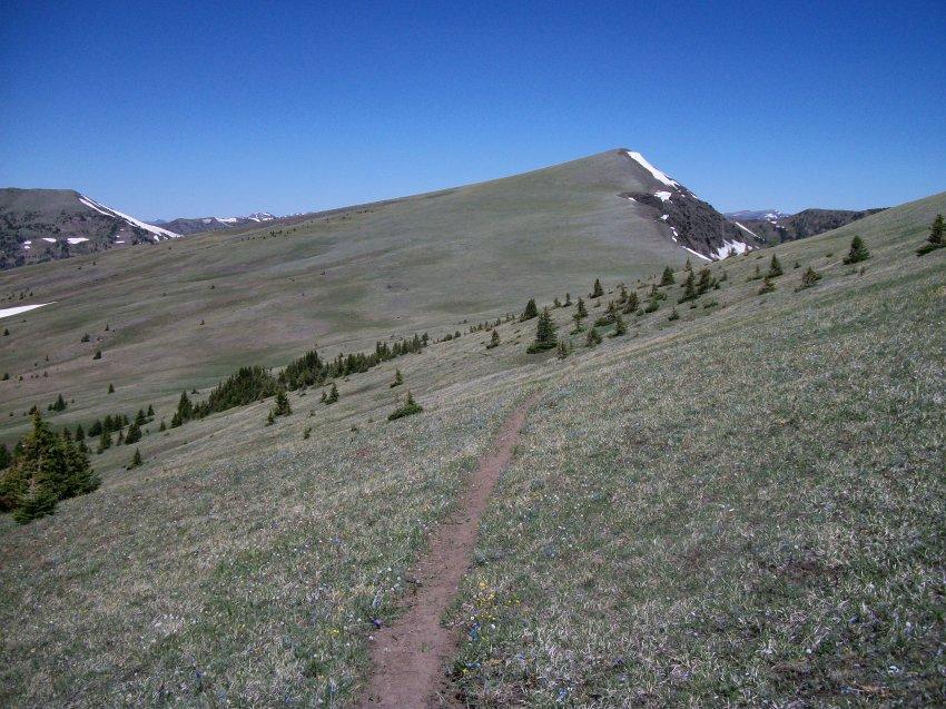 Yellowstone July 2012 449.JPG