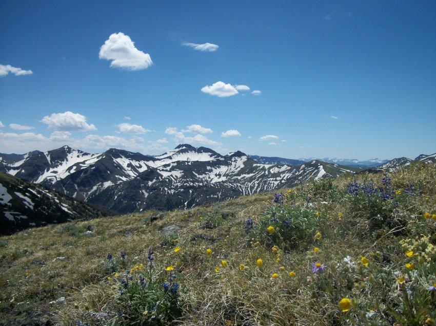 Yellowstone July 2012 484.JPG