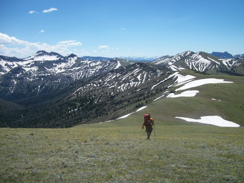 Yellowstone July 2012 497.JPG