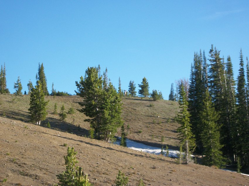 Yellowstone July 2012 575.JPG