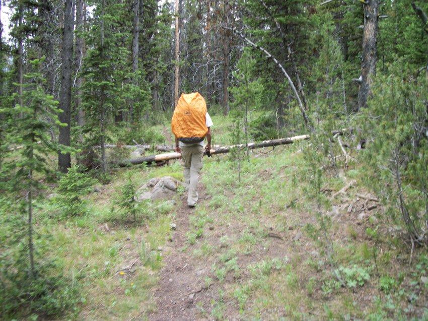 Yellowstone July 2012 602.JPG