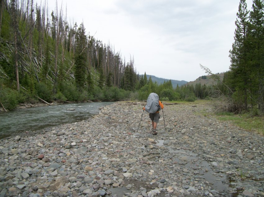 Yellowstone July 2012 605.JPG