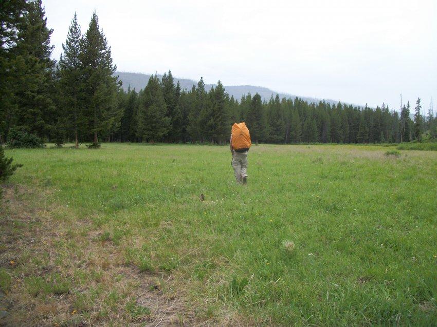 Yellowstone July 2012 611.JPG