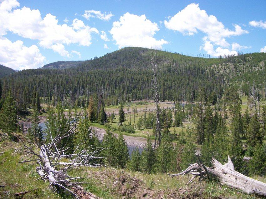 Yellowstone July 2012 630.JPG