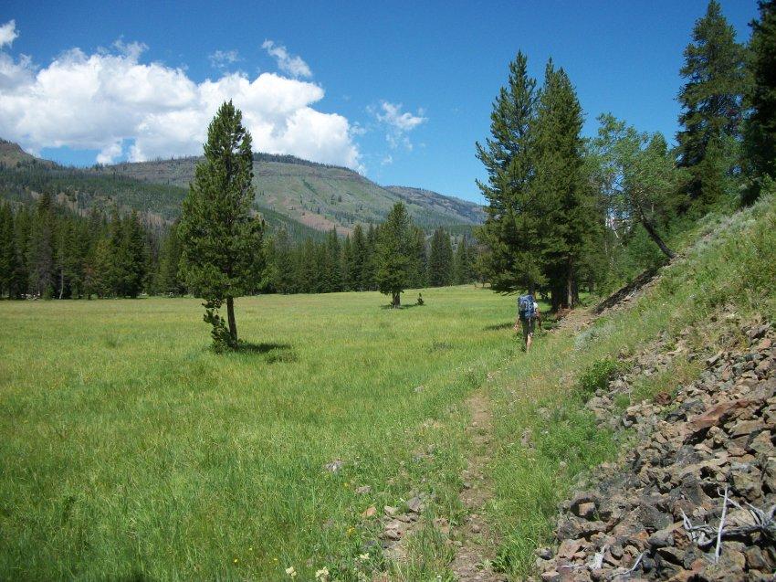 Yellowstone July 2012 633.JPG