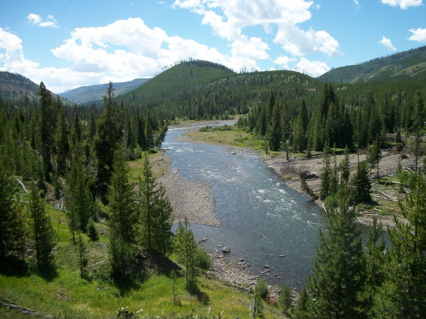 Yellowstone July 2012 634.JPG