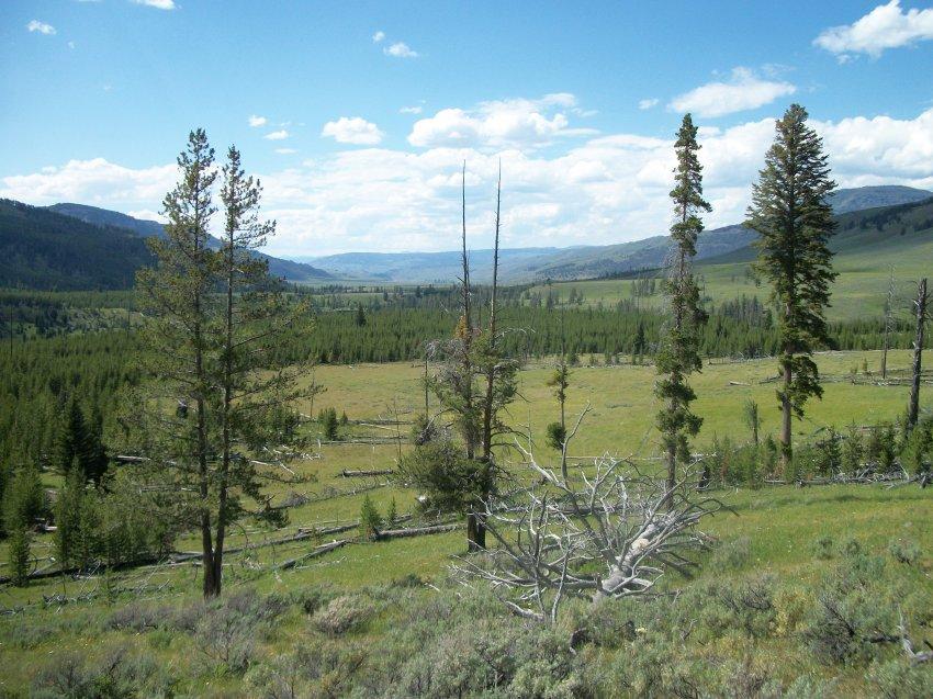 Yellowstone July 2012 640.JPG