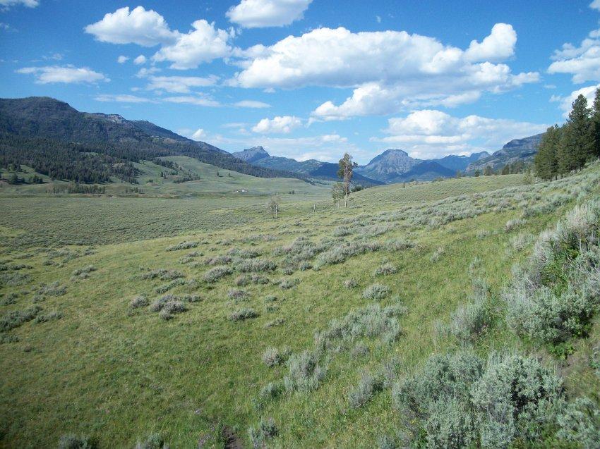 Yellowstone July 2012 646.JPG
