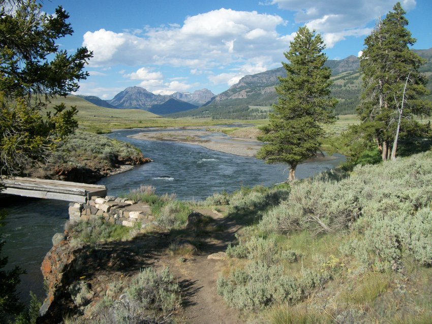 Yellowstone July 2012 648.JPG