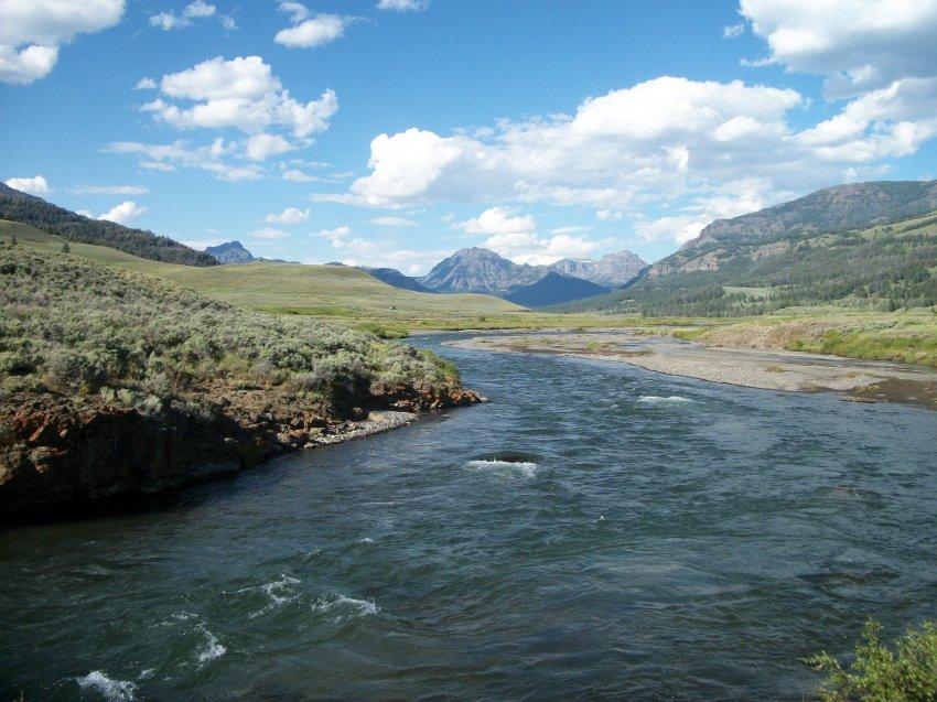Yellowstone July 2012 649.JPG