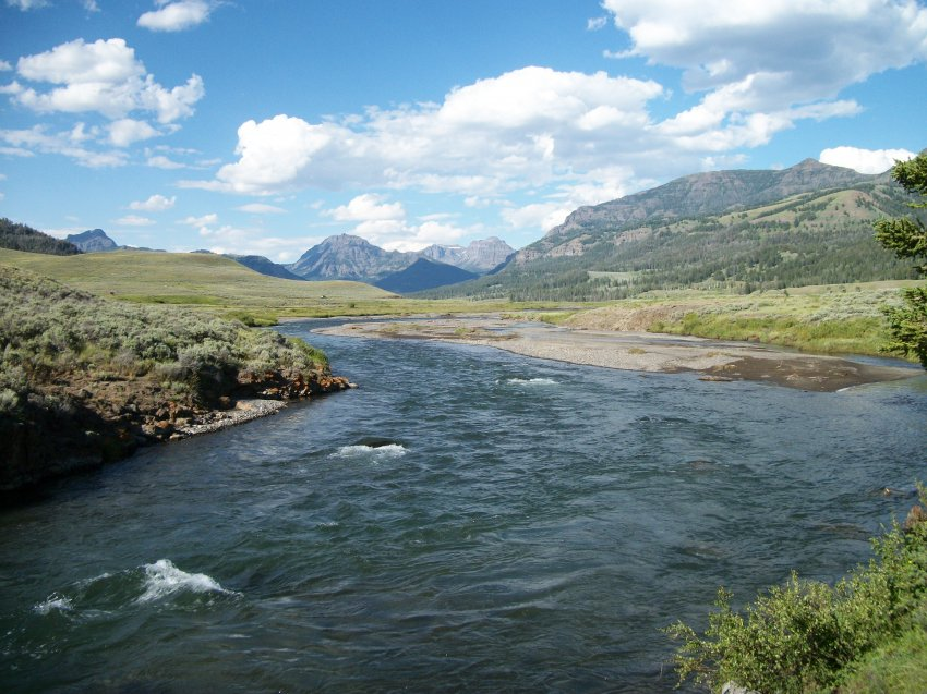 Yellowstone July 2012 650.JPG