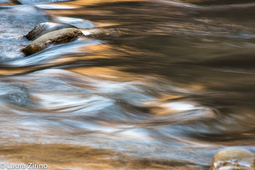 Zion abstracts-3.jpg