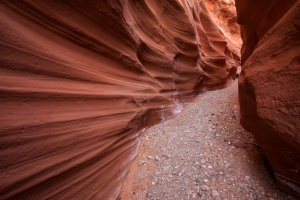 little-death-hollow-escalante-6.jpg