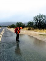 rain-IMG_E8799.jpg